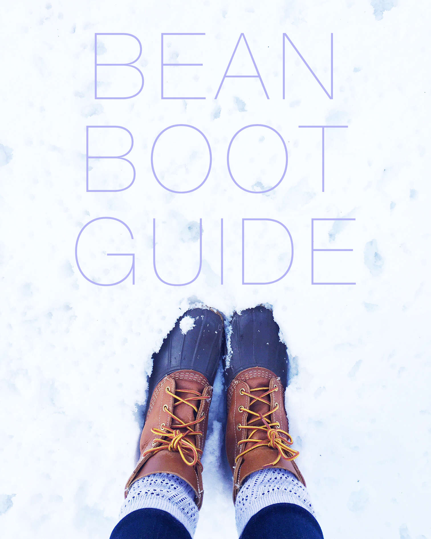 bean boot guide